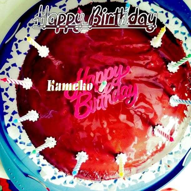 Happy Birthday Wishes for Kameko