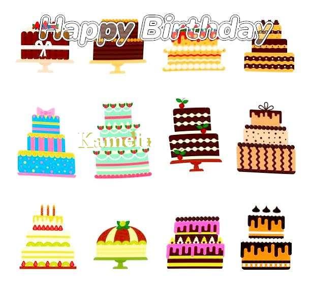 Kamelia Birthday Celebration
