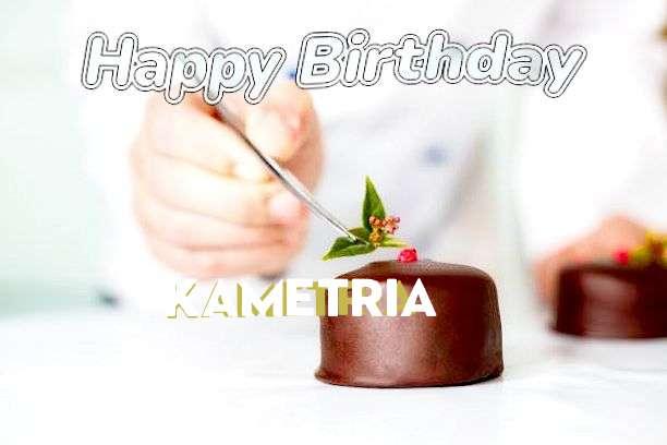 Kametria Birthday Celebration
