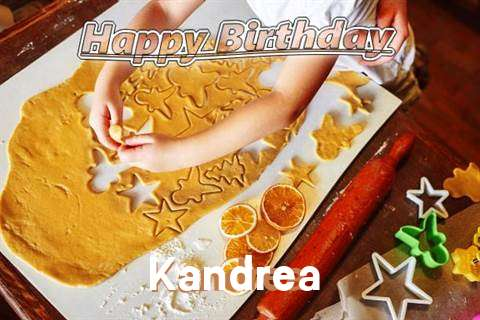 Kandrea Birthday Celebration