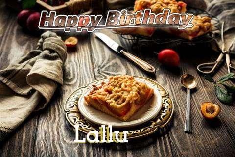 Lallu Cakes