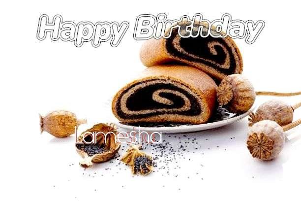 Happy Birthday Lamesha Cake Image