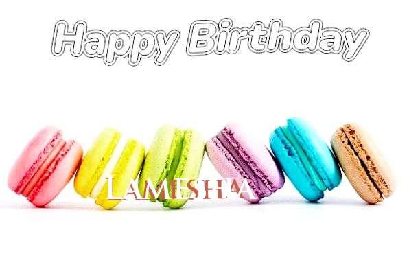 Lamesha Cakes