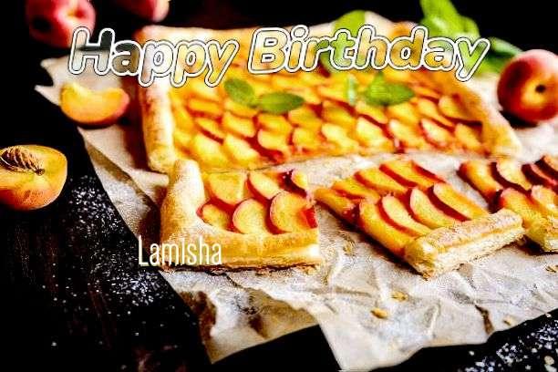 Lamisha Birthday Celebration