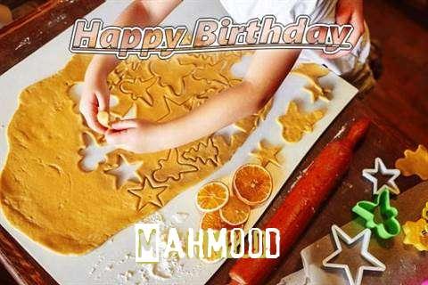 Mahmood Birthday Celebration