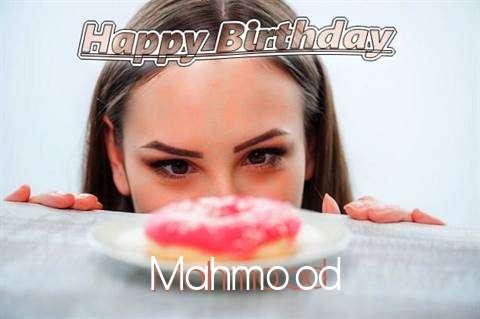 Mahmood Cakes