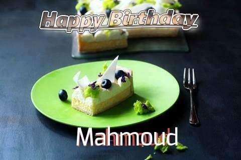 Mahmoud Birthday Celebration