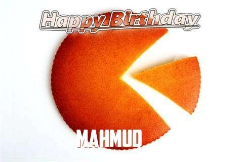 Mahmud Birthday Celebration