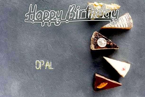 Opal Cakes