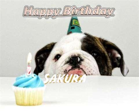 Birthday Wishes with Images of Sakura