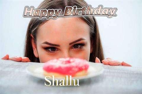 Shallu Cakes