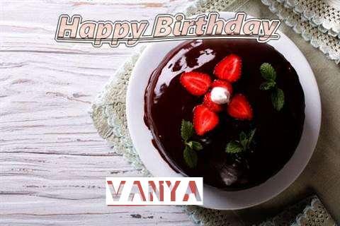 Vanya Cakes