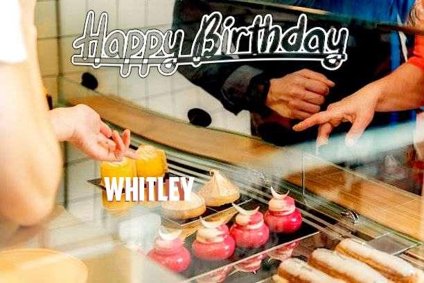 Happy Birthday Whitley Cake Image