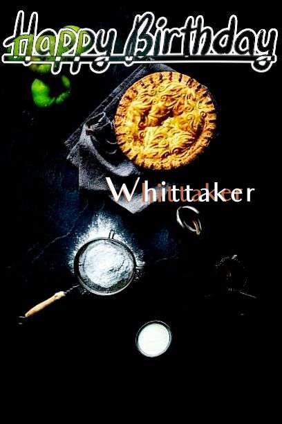 Happy Birthday Whittaker