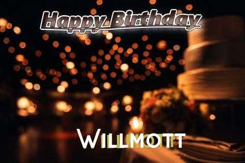 Willmott Cakes