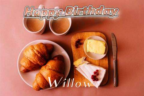 Happy Birthday Wishes for Willow
