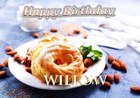 Willow Cakes