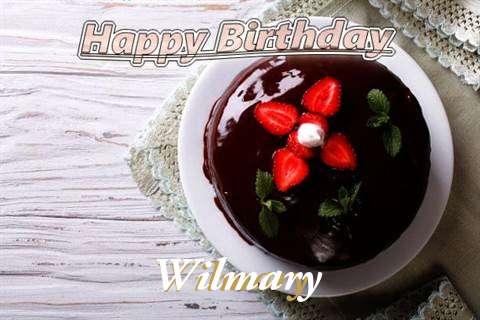 Wilmary Cakes
