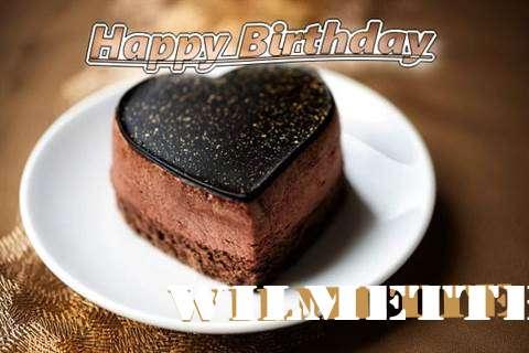 Happy Birthday Cake for Wilmette