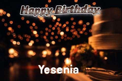Yesenia Cakes